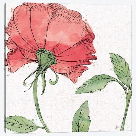Blossom Sketches IV Color Canvas Print #DAB77} by Daphne Brissonnet Canvas Artwork