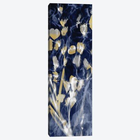 Indigo Nature with Gold I Canvas Print #DAC100} by Danielle Carson Canvas Artwork