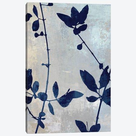 Nature Blue Silhouette II Canvas Print #DAC105} by Danielle Carson Art Print