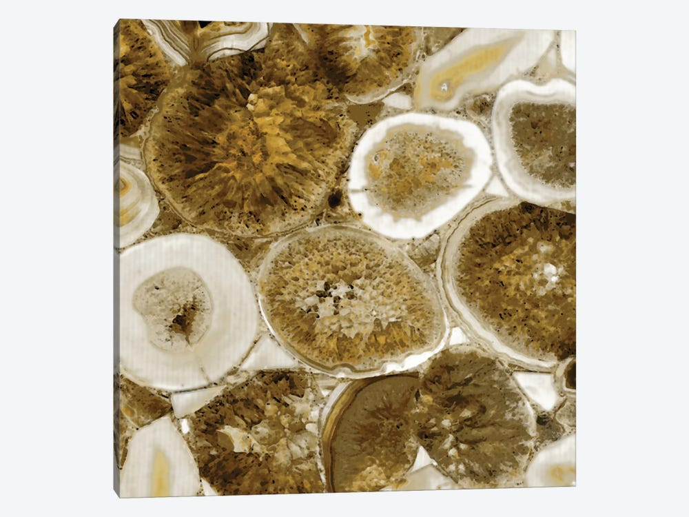 Agate In Gold II by Danielle Carson 1-piece Canvas Wall Art