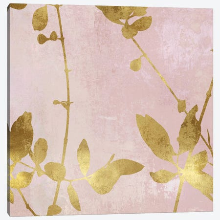 Nature Gold on Pink Blush III Canvas Print #DAC111} by Danielle Carson Canvas Art Print