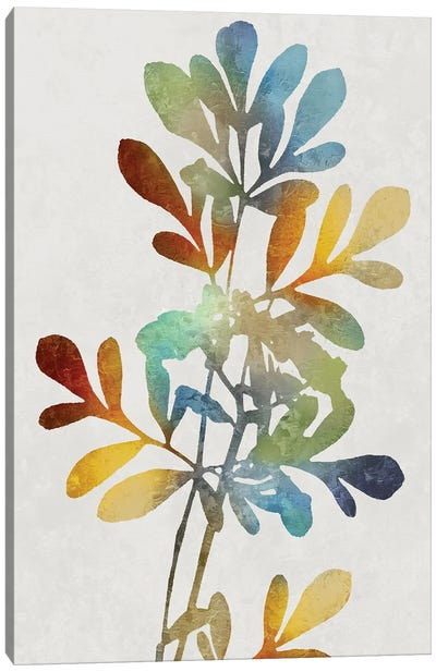Colorful Nature II Canvas Art Print