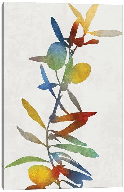 Colorful Nature IV Canvas Art Print