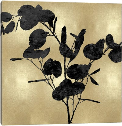 Nature Black On Gold III Canvas Art Print