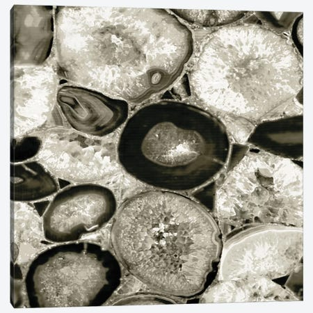 Agate In Pewter I Canvas Print #DAC13} by Danielle Carson Canvas Art