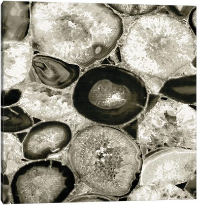 Agate In Pewter I Canvas Art Print