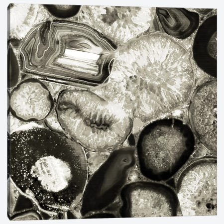 Agate In Pewter II Canvas Print #DAC14} by Danielle Carson Canvas Print