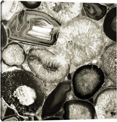 Agate In Pewter II Canvas Art Print