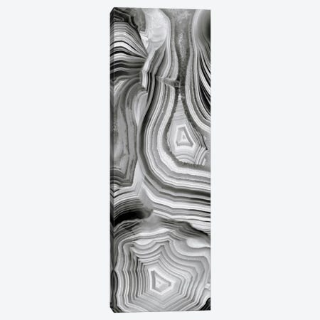 Agate Panel Grey III Canvas Print #DAC23} by Danielle Carson Canvas Art Print