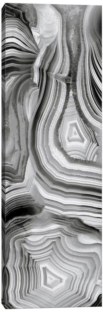 Agate Panel Grey III Canvas Art Print