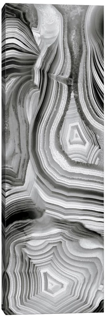 Agate Panel Grey III Canvas Art Print