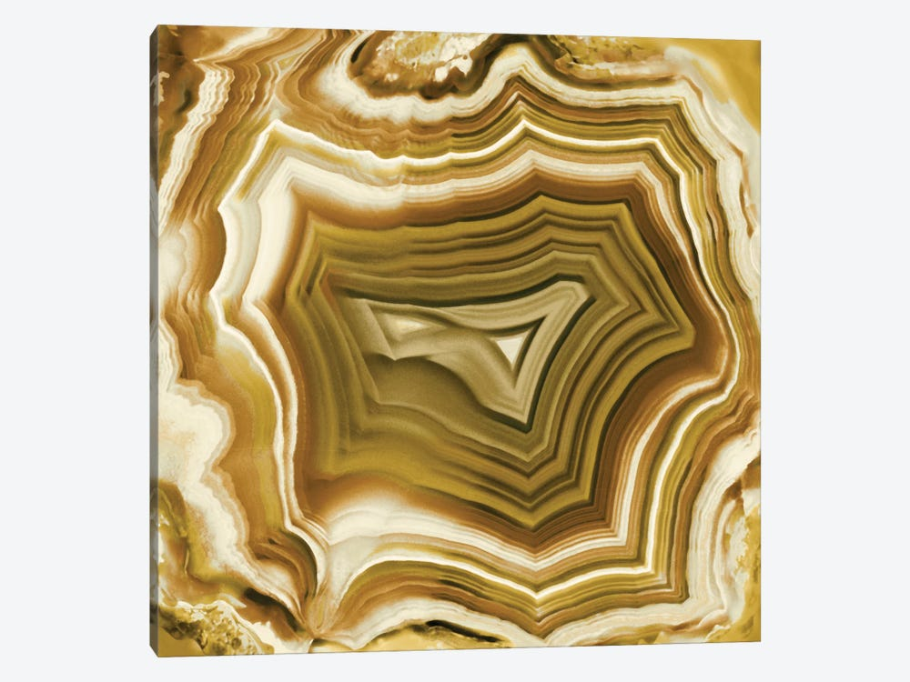 Agate In Amber by Danielle Carson 1-piece Canvas Art