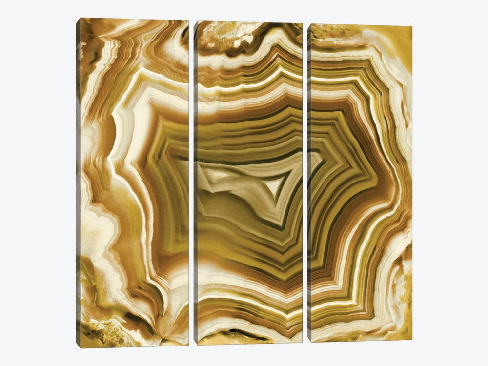Agate In Amber by Danielle Carson 3-piece Canvas Wall Art