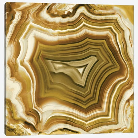 Agate In Amber Canvas Print #DAC3} by Danielle Carson Canvas Wall Art