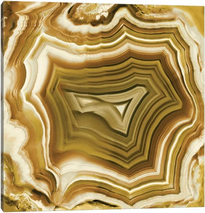 Agate In Amber Canvas Art Print