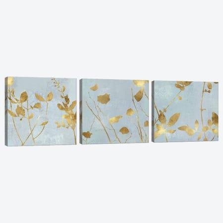Nature Gold on Blue Canvas Print Set #DAC3HSET001} by Danielle Carson Canvas Wall Art
