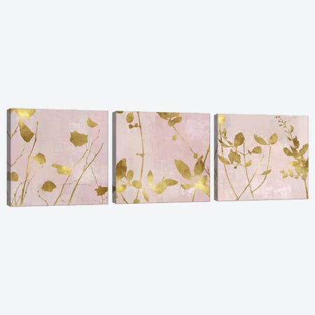 Nature Gold on Pink Blush Triptych Canvas Print Set #DAC3HSET002} by Danielle Carson Canvas Wall Art