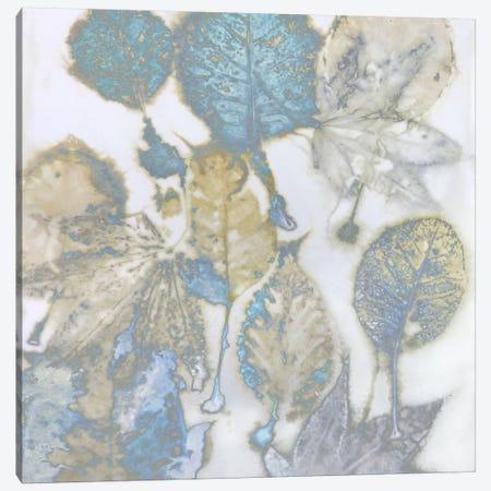 Aqua Leaves I Canvas Print #DAC41} by Danielle Carson Canvas Art Print