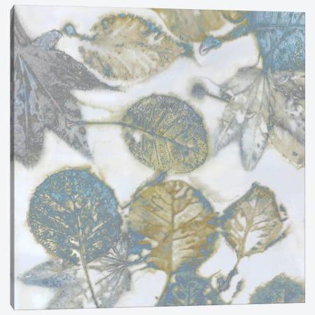 Aqua Leaves II Canvas Print #DAC42} by Danielle Carson Art Print