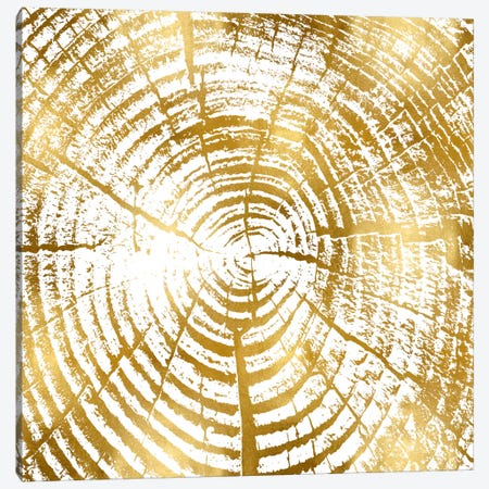 Chipped Gold I Canvas Print #DAC43} by Danielle Carson Art Print