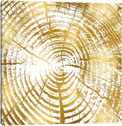 Chipped Gold I Canvas Art Print