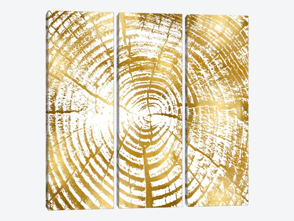 Chipped Gold I by Danielle Carson 3-piece Canvas Wall Art
