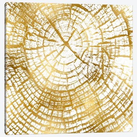 Chipped Gold II Canvas Print #DAC44} by Danielle Carson Canvas Wall Art