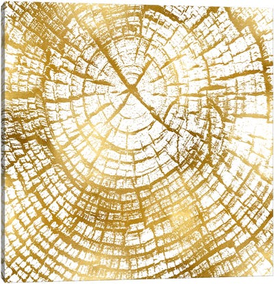 Chipped Gold II Canvas Art Print