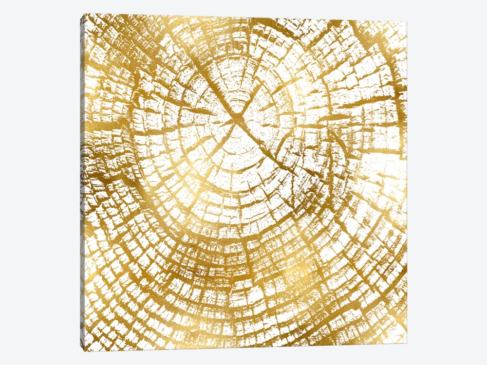 Chipped Gold II by Danielle Carson 1-piece Canvas Print