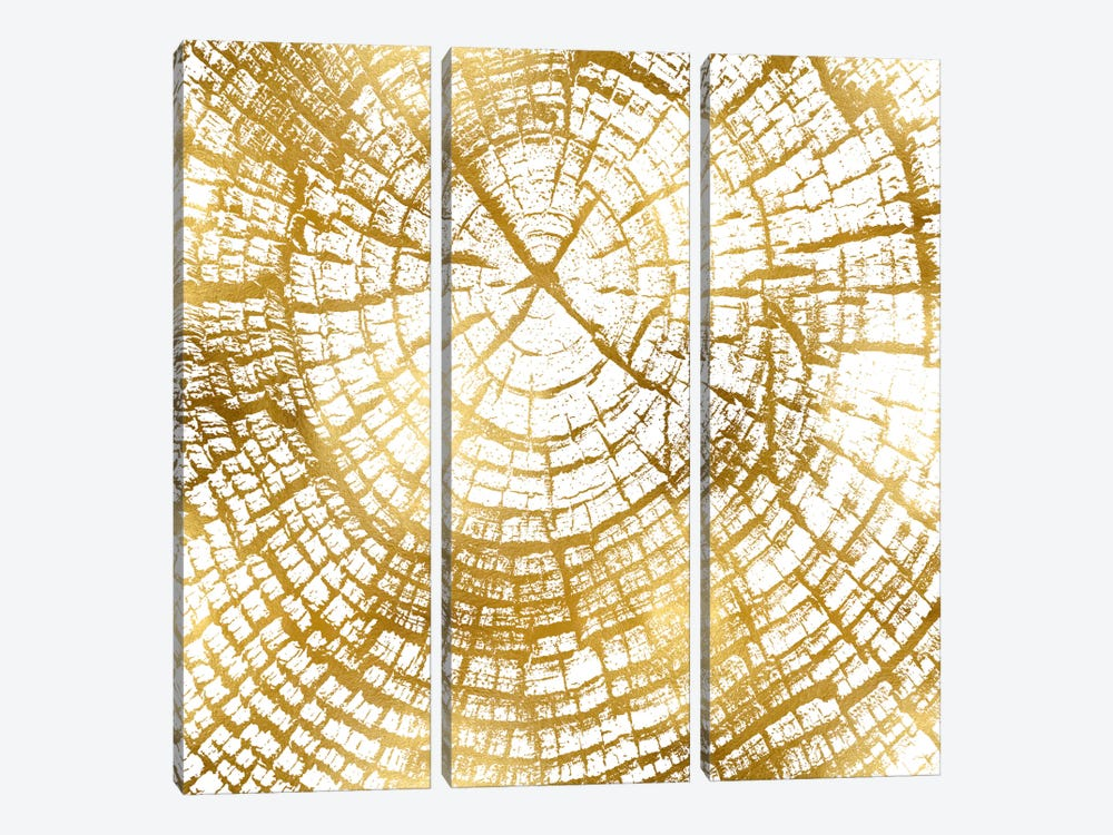Chipped Gold II by Danielle Carson 3-piece Canvas Print