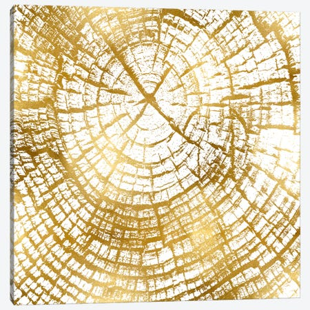 Chipped Gold II Canvas Print #DAC44} by Danielle Carson Canvas Wall Art