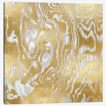 Gold Variations I Canvas Print #DAC45} by Danielle Carson Canvas Wall Art