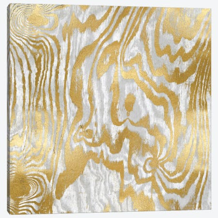 Gold Variations II Canvas Print #DAC46} by Danielle Carson Canvas Wall Art