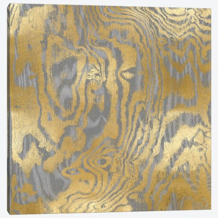Gold Variations III Canvas Print #DAC47} by Danielle Carson Canvas Art