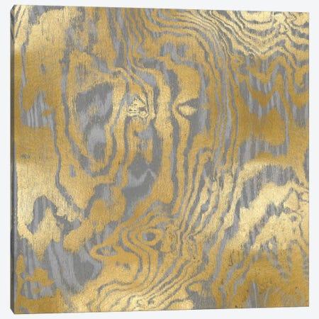Gold Variations III Canvas Print #DAC47} by Danielle Carson Canvas Art