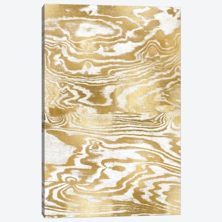 Golden Movement III Canvas Print #DAC55} by Danielle Carson Art Print