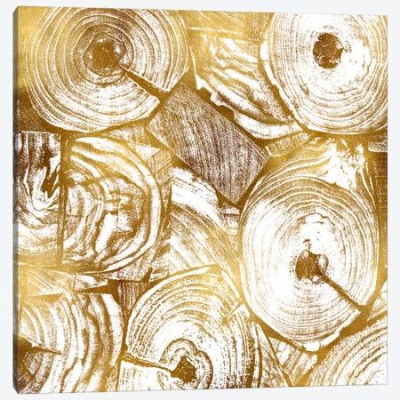 Golden Trunks I Canvas Print #DAC57} by Danielle Carson Art Print