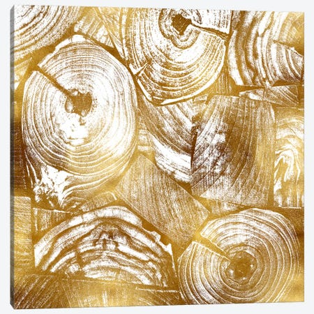 Golden Trunks II Canvas Print #DAC58} by Danielle Carson Canvas Wall Art
