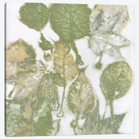 Green Leaves I Canvas Print #DAC59} by Danielle Carson Canvas Art