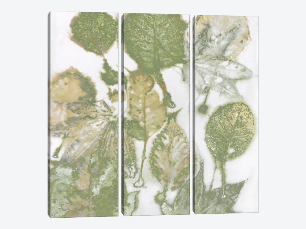Green Leaves I by Danielle Carson 3-piece Canvas Print