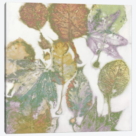 Multi-Colored Leaves I Canvas Print #DAC65} by Danielle Carson Canvas Wall Art