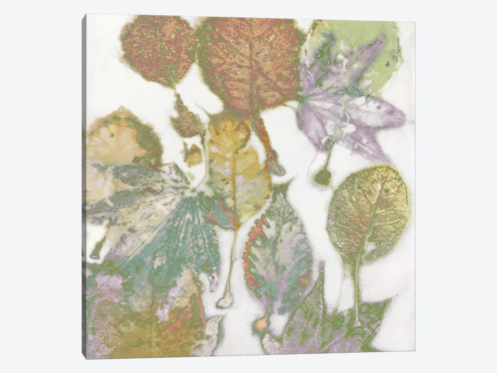 Multi-Colored Leaves I by Danielle Carson 1-piece Canvas Wall Art