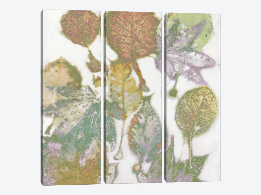 Multi-Colored Leaves I by Danielle Carson 3-piece Canvas Wall Art