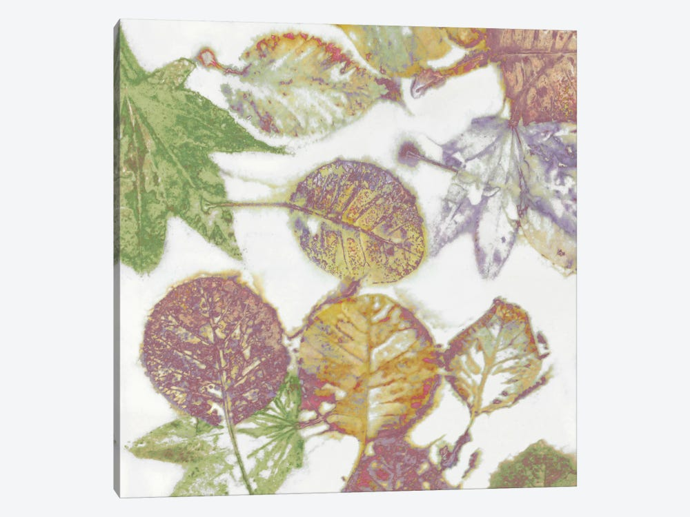 Multi-Colored Leaves II by Danielle Carson 1-piece Canvas Print
