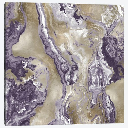 Onyx Amethyst Canvas Print #DAC67} by Danielle Carson Canvas Art