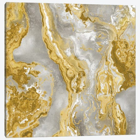 Onyx Golden Canvas Print #DAC70} by Danielle Carson Canvas Artwork
