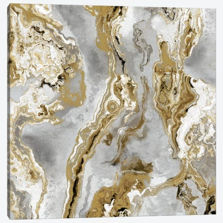 Onyx Silver Canvas Print #DAC74} by Danielle Carson Canvas Print