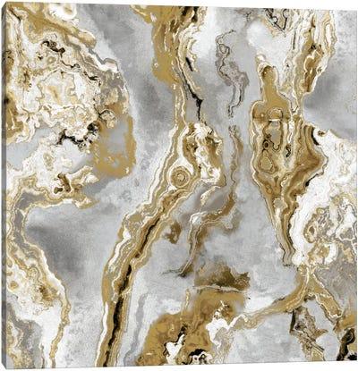 Onyx Silver Canvas Art Print