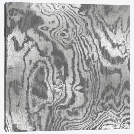 Silver Variations I Canvas Print #DAC76} by Danielle Carson Canvas Print