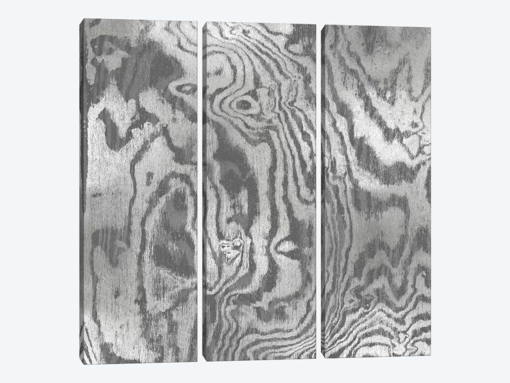 Silver Variations I by Danielle Carson 3-piece Canvas Wall Art